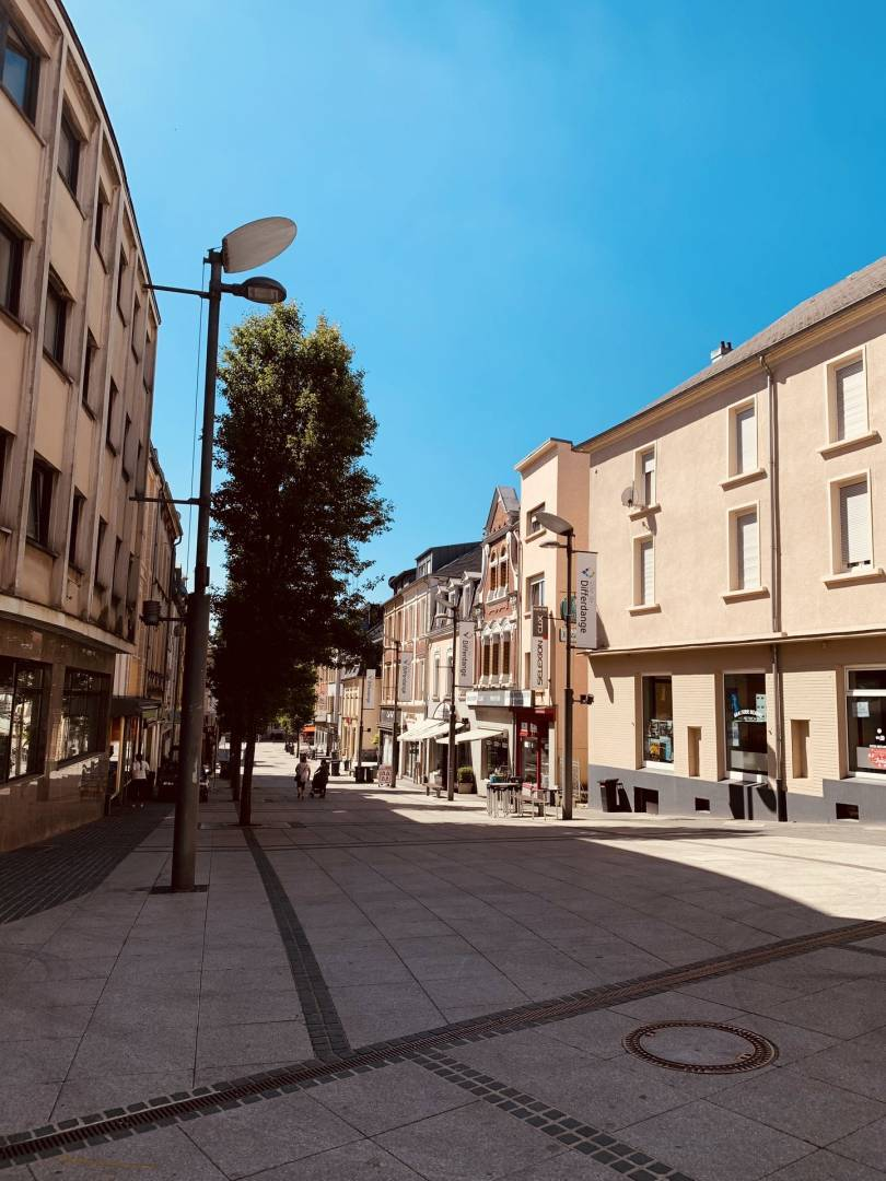Vente Local commercial Differdange